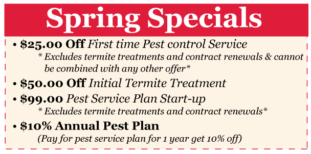 Spring 2018 Specials - Hopper Termite and Pest Management